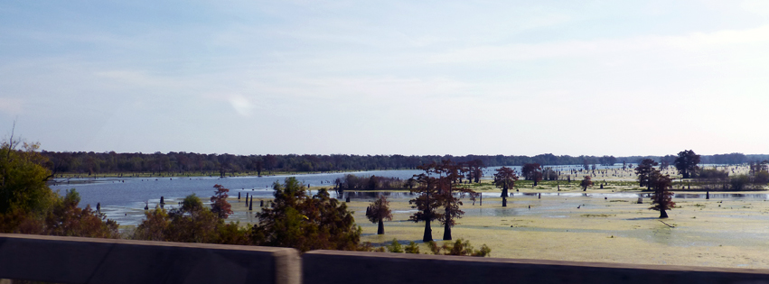 2012.11 Louisiana (FB) P1020676