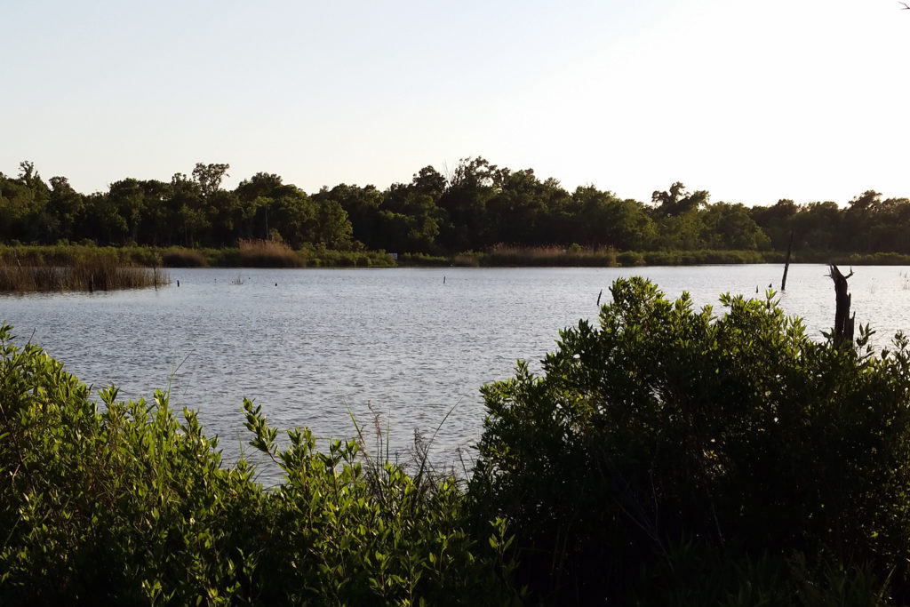 Bay Area Park; Clear Lake, Texas